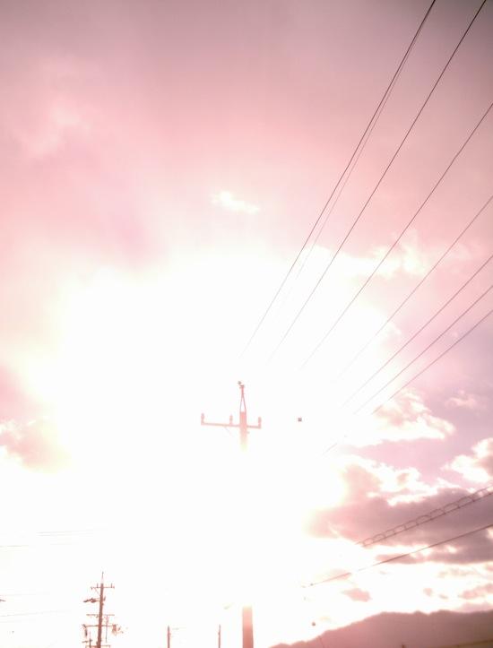 FP500D4 作例写真