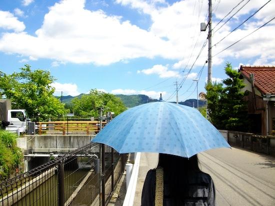 ヤシカEZ F1233 作例写真