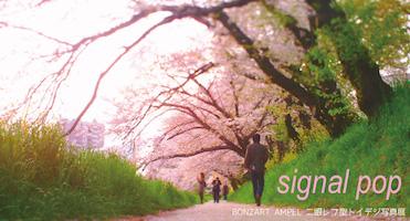 Signal Pop〜BONZART AMPEL 二眼レフ型トイデジ写真展〜