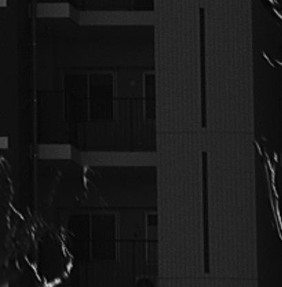 ライカMモノクローム:作例