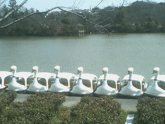 大高緑地公園 ボート
