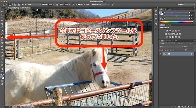Photoshop コピースタンプツール