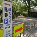 岡崎城 藤まつり 2014