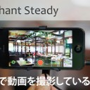 Elephant Steady