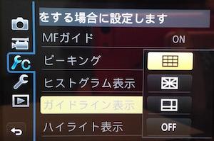 GX1 ガイドライン