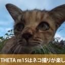 新型THETA