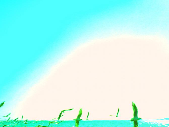 デジタルハリネズミ グル 作例