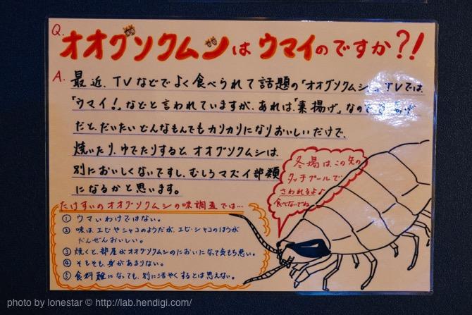竹島水族館 オオグソクムシ