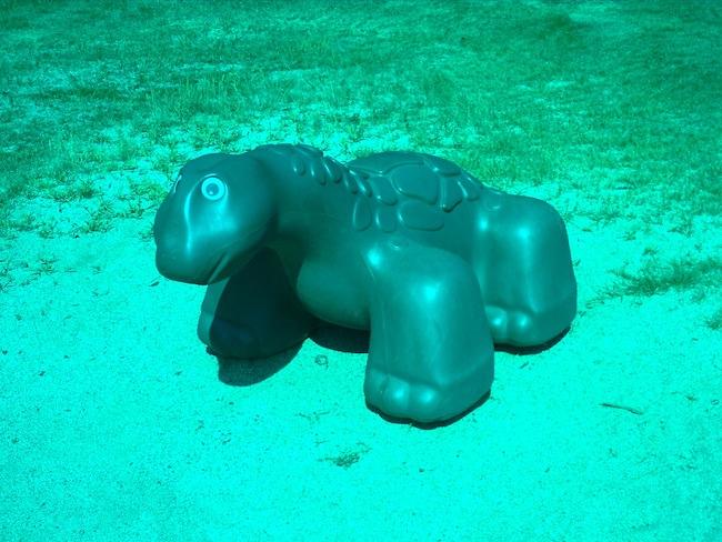 アナグリフ3D デジカメ