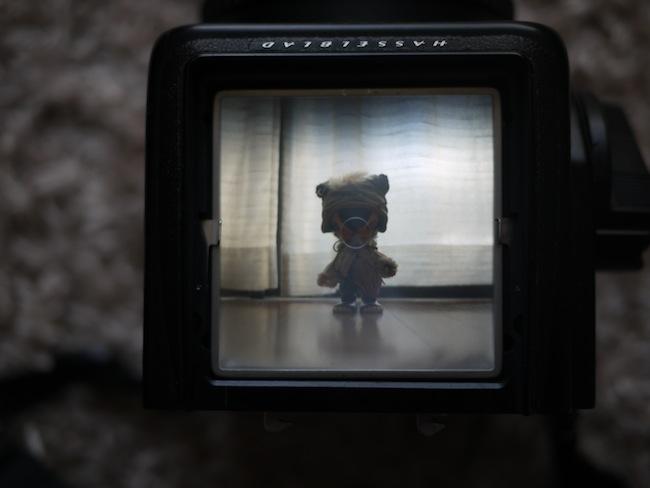 ハッセルブラッド ブライトマットスクリーン