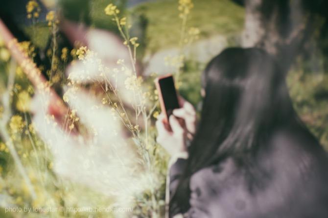 Nik Collection トイカメラ