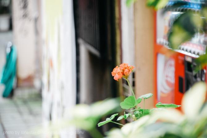 岐阜 撮影スポット