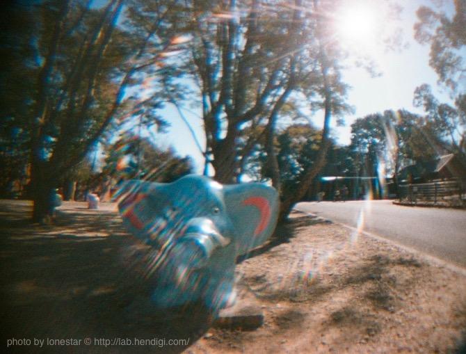 ベビーホルガ 作例写真 魚眼