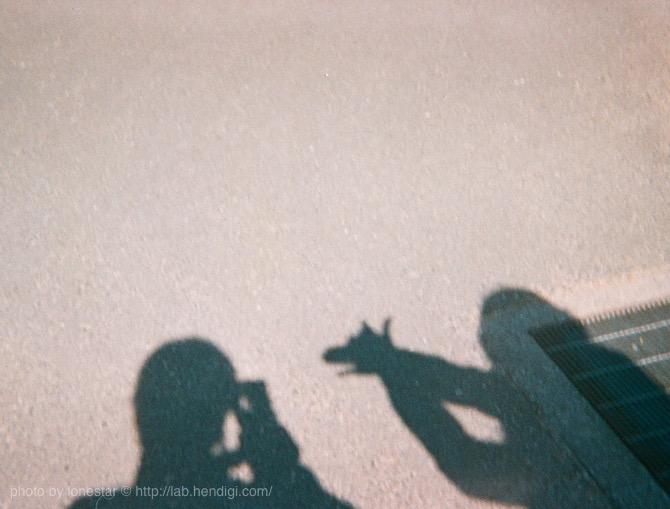 ベビーホルガ 作例写真