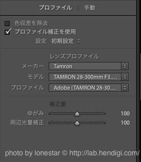 28-300mm F/3.5-6.3 Di VC PZD レンズ補正