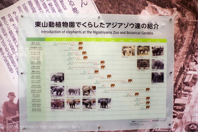 東山動物園 ゾウ舎