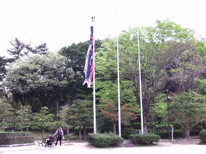 F531 ヤシカ 作例写真