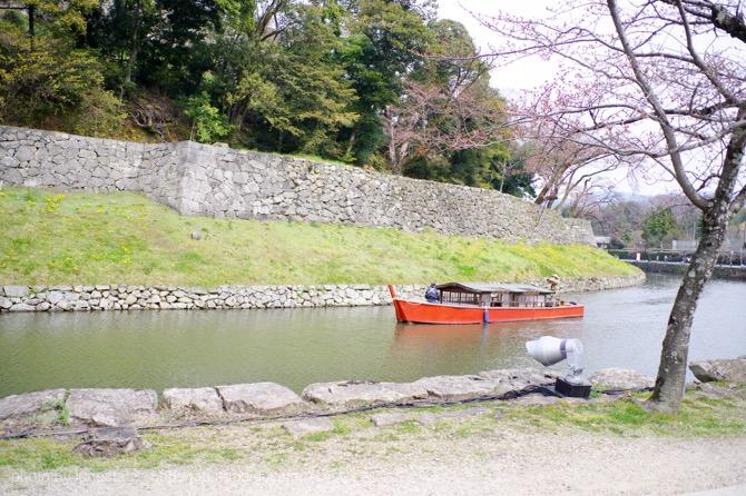 彦根城 桜 2017