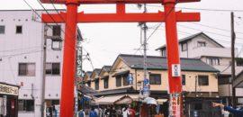 岐阜の観光名所「おちょぼ稲荷」を歩いてみました。猫がめちゃくちゃ多かったけど…いつもそうなの!?