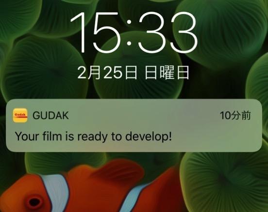 GUDAK レビュー