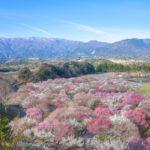 日本の絶景 三重県