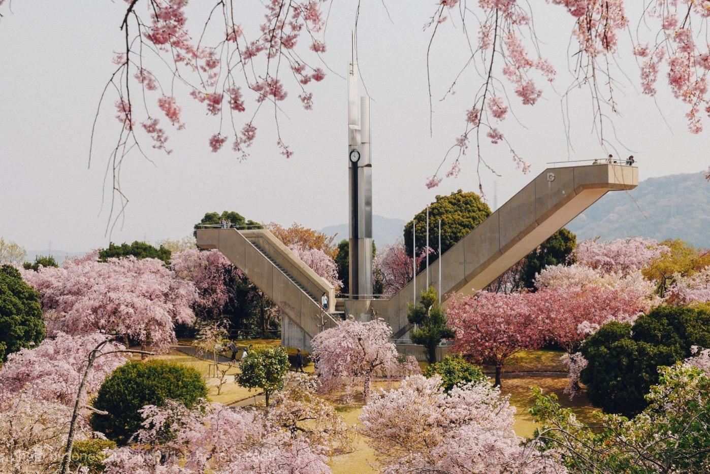 幸田町 希望の塔