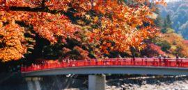 愛知県で有名な紅葉スポット「香嵐渓」に行ってきました!2018年の見頃はもうすぐ?