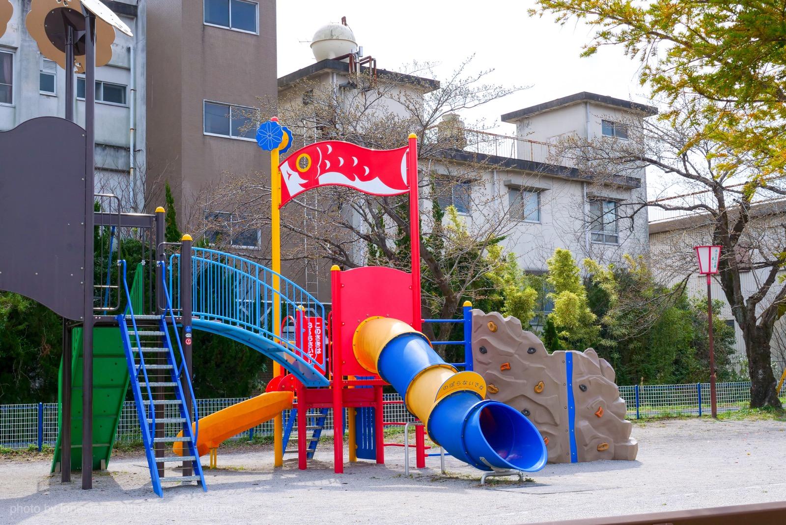 相川 公園 鯉のぼり