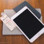 iPad mini スリーブケース 無印