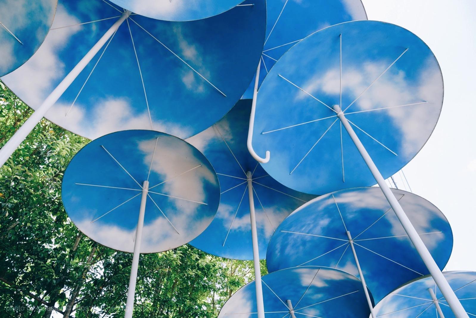 ニコエ バス停 傘