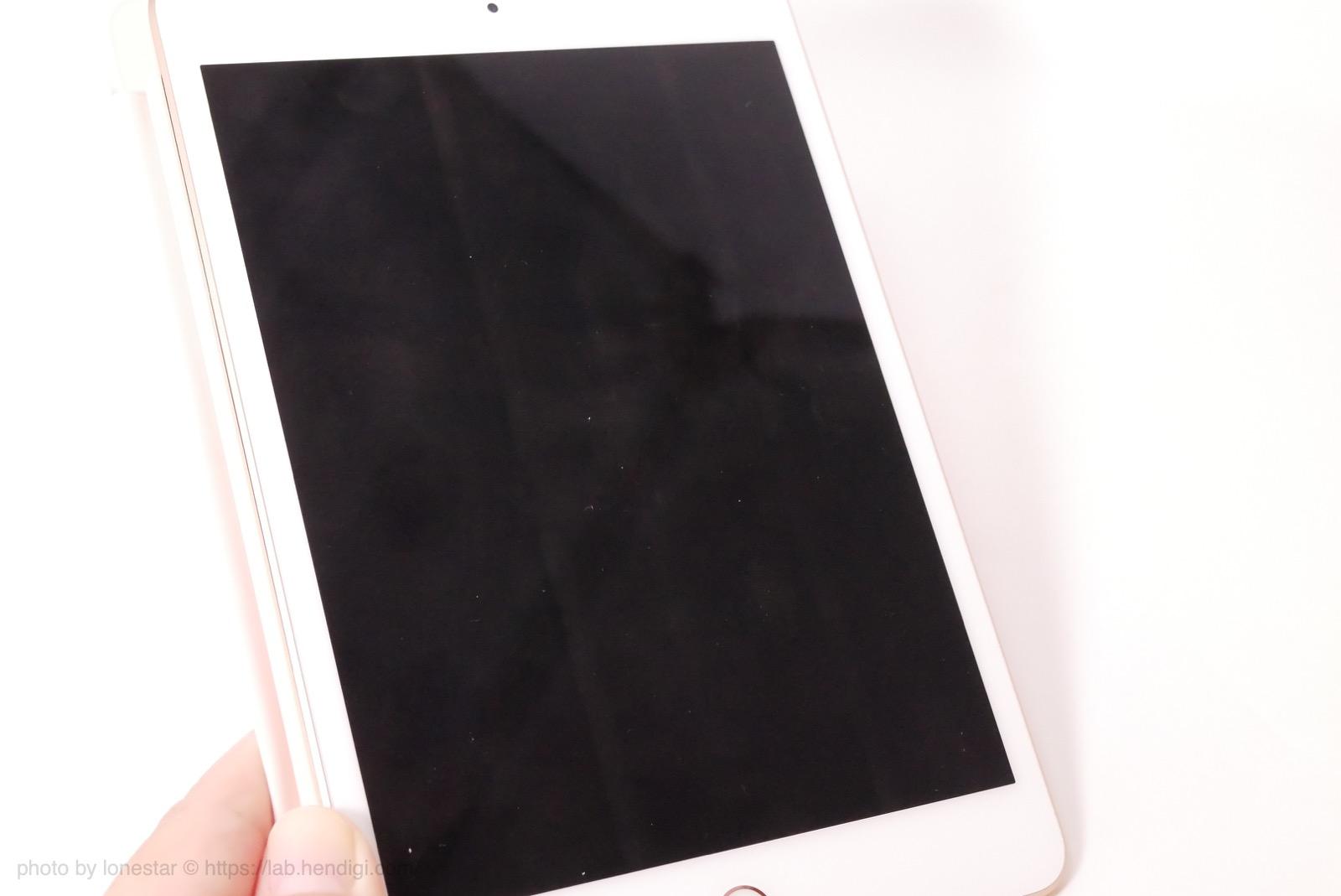 iPad mini 指紋