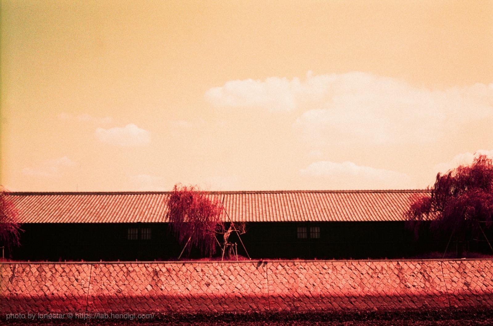 ロモ パープルフィルム 作例写真