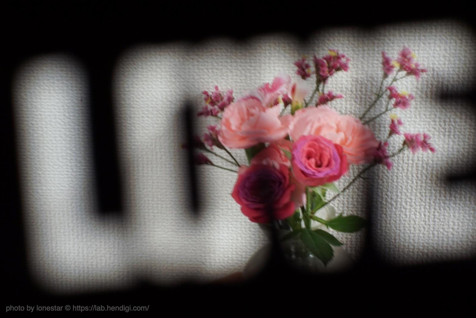 GIZMON Bokeh Lens Illuminator 作例写真