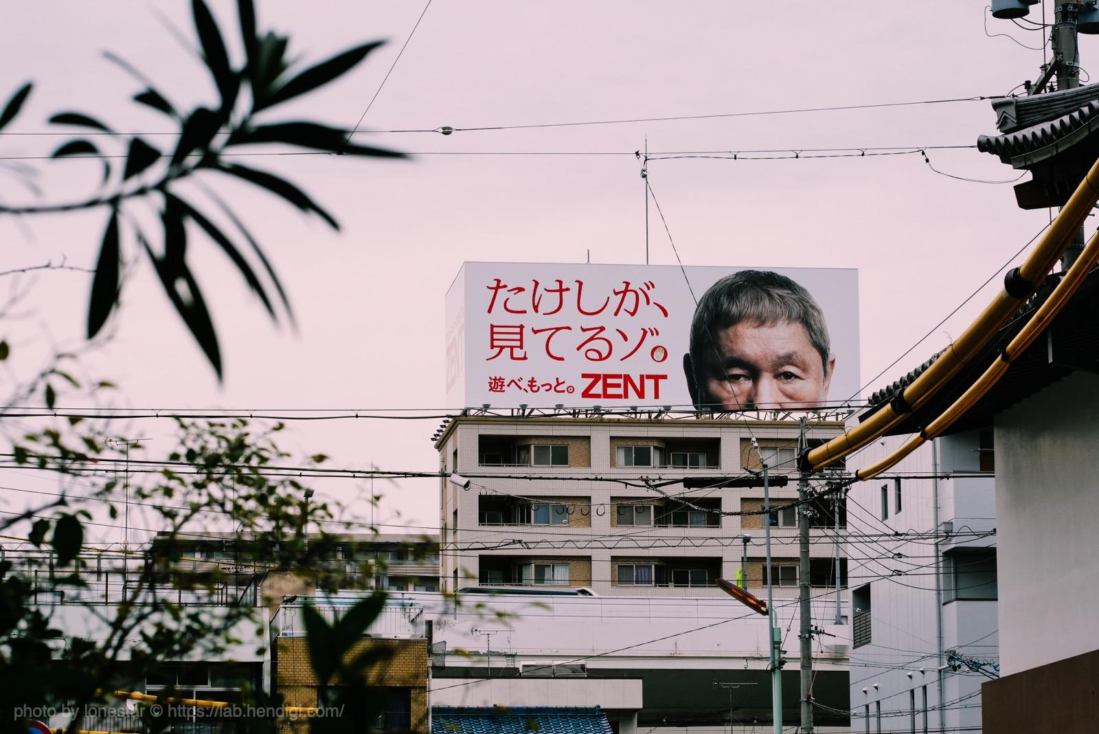 たこさんぽ 2019