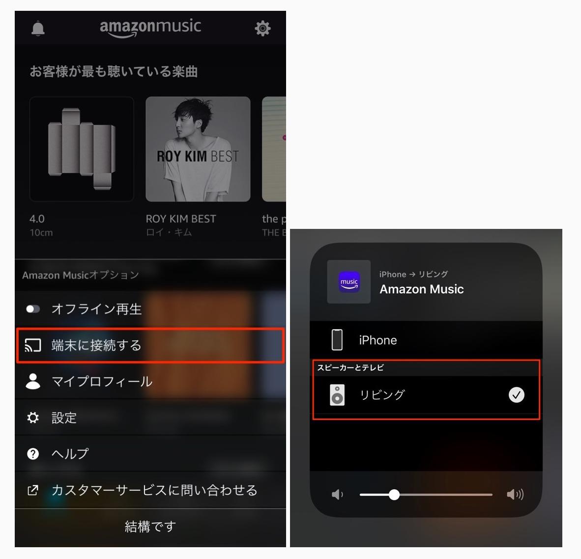 Bose Home Speaker 300 Amazonミュージック