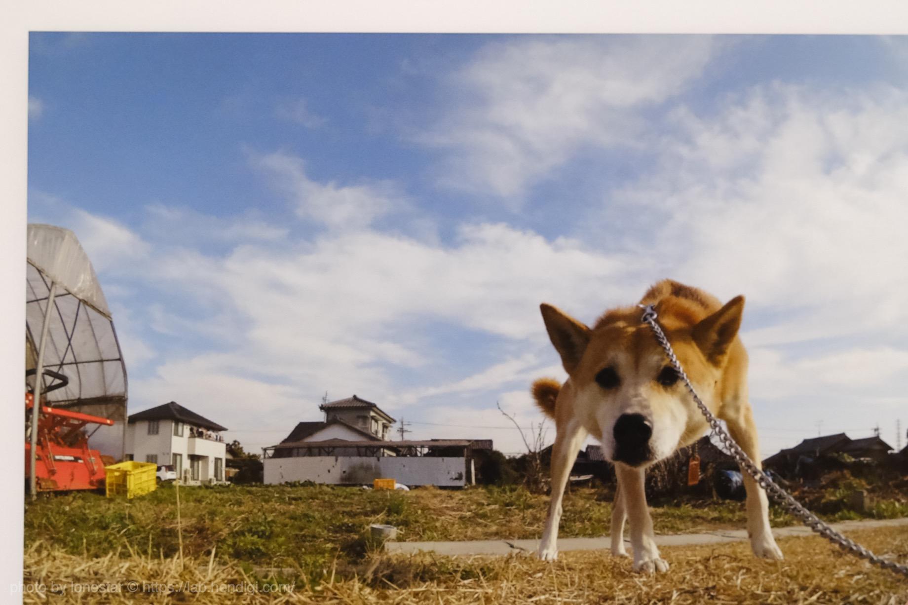 PhotoJewel S グラデーション