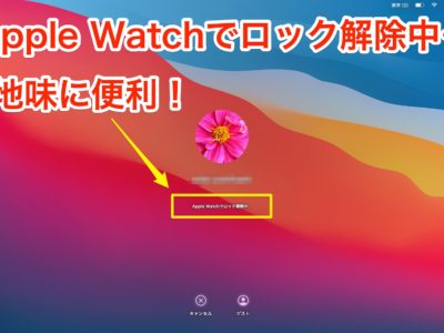 Apple Watch Mac ログイン